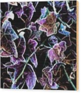Purple Ivy Wood Print