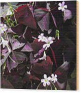 Purple Leaves With Tiny Pink Flowers Wood Print