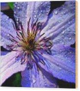 Purple Lilly Wood Print