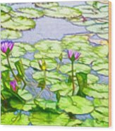 Purple Lotus Flower  Wood Print