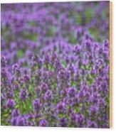 Purple Meadow 3 Wood Print