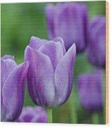 Purple Ones Wood Print