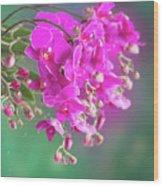 Purple Orchid Branch Wood Print