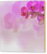 Purple Orchid Flower On Blur Background Wood Print