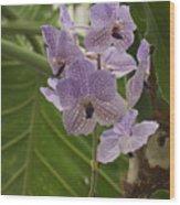 Purple Orchids 2 Wood Print