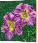 Purple Pair Wood Print
