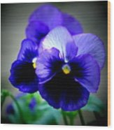 Purple Pansy - 8x10 Wood Print
