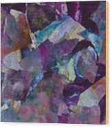 Purple Passion  Wood Print by Don  Wright