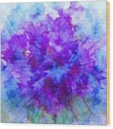 Purple Passion Hydrangea  Wood Print