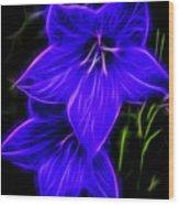 Purple Passion Wood Print by Joann Copeland-Paul