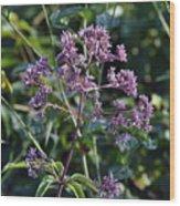 Purple  Wood Print