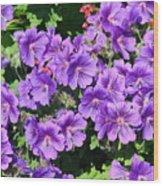 Purple Perfection Wood Print