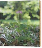 Purple Persists Wood Print