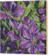 Purple Persuasion Wood Print