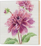 Purple Petal Extravaganza Wood Print