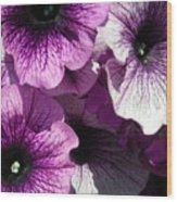 Purple Petunia Paradise Wood Print