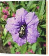 Purple Petunia With A Bee Wood Print