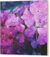 Purple Pink Painterliness Wood Print