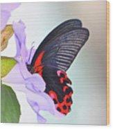 Purple Punch Wood Print
