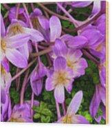 Purple Rain Lilies Wood Print