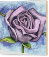 Purple Rose Wood Print by Robert Morin