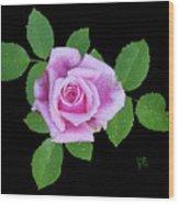 Purple Rosebud2 Cutout Wood Print