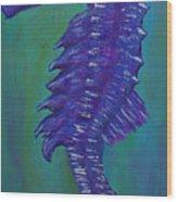 Purple Seahorse Wood Print