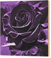 Purple Seduction Wood Print