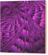 Purple Shell Wood Print