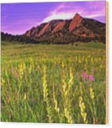 Purple Skies And Wildflowers Wood Print