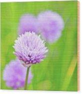Purple Spring 11 Wood Print
