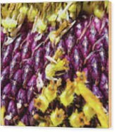 Purple Sunflower Seeds Wood Print