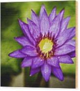 Purple Sunrise Wood Print