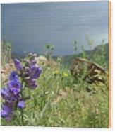 Purple Thunder Wood Print