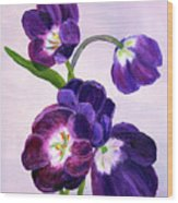 Purple Tulips On Gray Background Wood Print