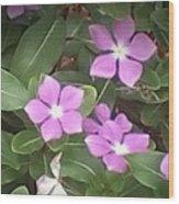 Purple Vintas Flower Photograph Wood Print