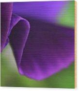 Purple Viola Wave Wood Print
