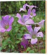 Purple Wildflowers Macro 2 Wood Print