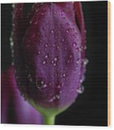 Purplelicious Wood Print by Tracy Hall