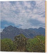 Pusch Ridge Morning H26 Wood Print