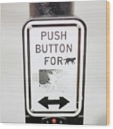Push Button For Cat Wood Print