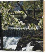 Putnam Spring Wood Print