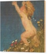 Putto And Butterfly 1896 Wood Print