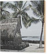 Pu'uhonua O Honaunau National Park Wood Print
