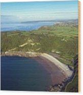 Pwll Du Bay Swansea Wood Print