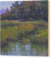 Pyramid Lake Marsh Wood Print
