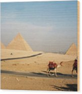 Pyramids At Giza Wood Print
