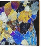 Pyroxenite Mineral, Light Micrograph Wood Print
