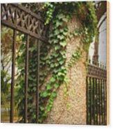 Qingdao Castle Garden Wood Print