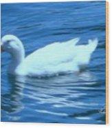 Quack Quack Said The Duck Wood Print